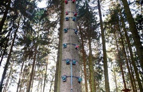 Klettern am Monkeytree