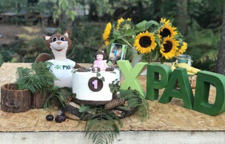Traumtorten XPAD Kindergeburtstag